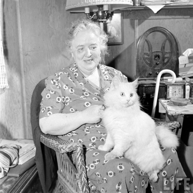 Carolyn et son chat guide d'aveugle en 1947