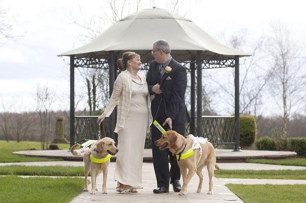 Tomber amoureux : des chiens plus efficaces que meetic