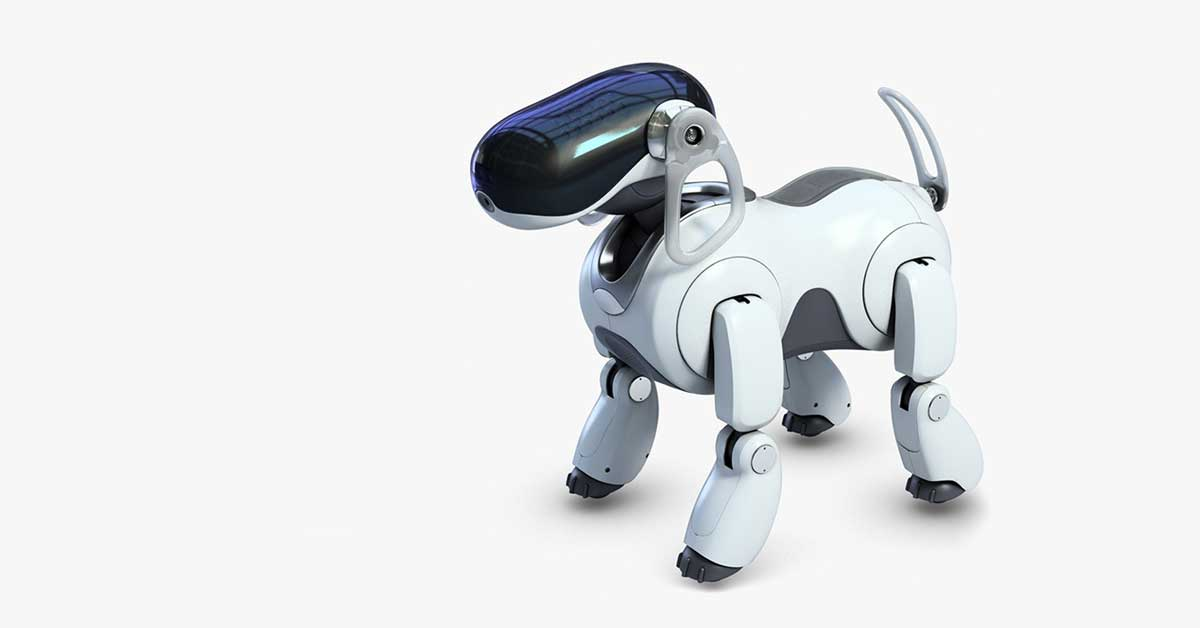 chien virtuel guide aveugle mit robot